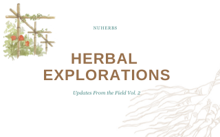 Herbal Explorations Vol. 2: From The Field Report