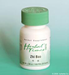 Zhi Bao
