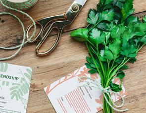 Geo authentic herbs