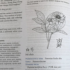 Outline Guide To Chinese Herbal Patent Medicines.